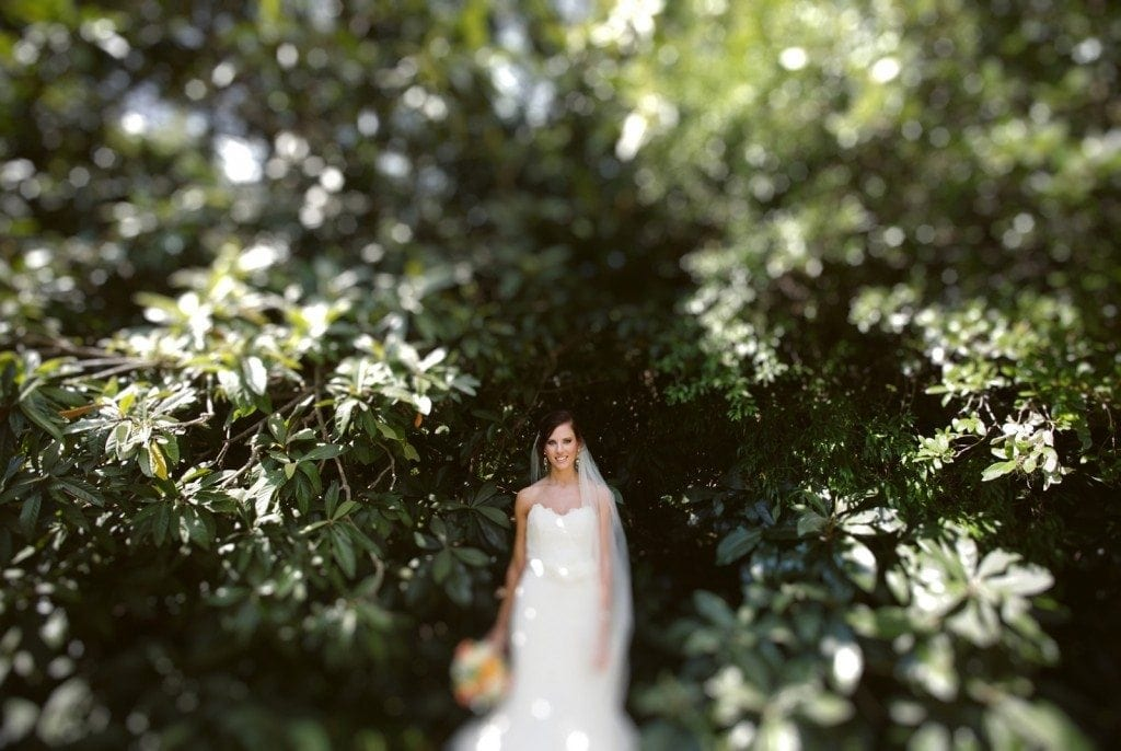 Green leaves surround a bride in the Laguna Gloria garden.